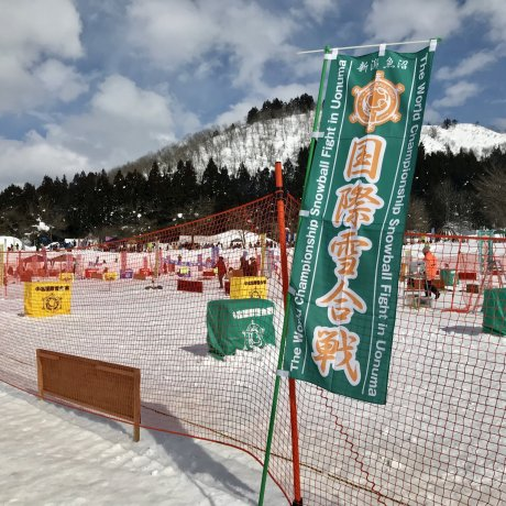 Kontes Salju Internasional di Koide