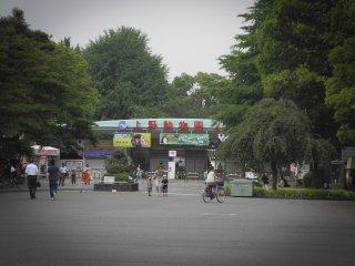 The Ueno Zoo!