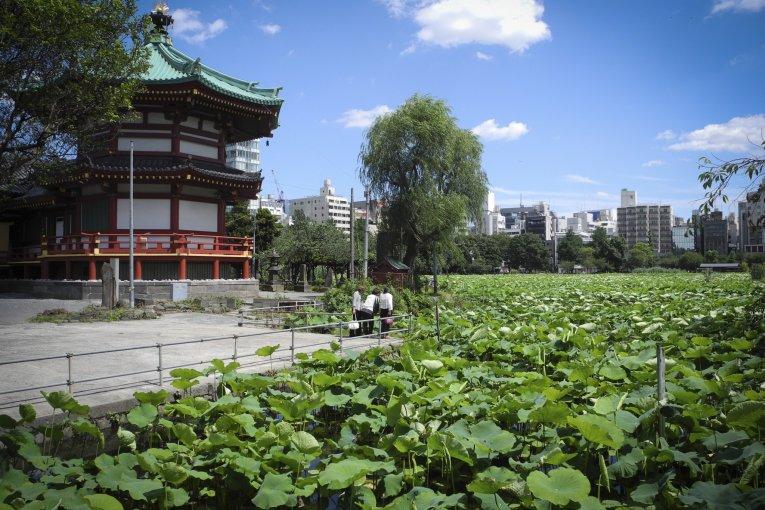 Le Parc de Ueno