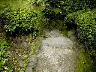 Steps Toward the Pond
