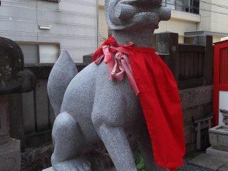 A komainu guardian wolf-dog