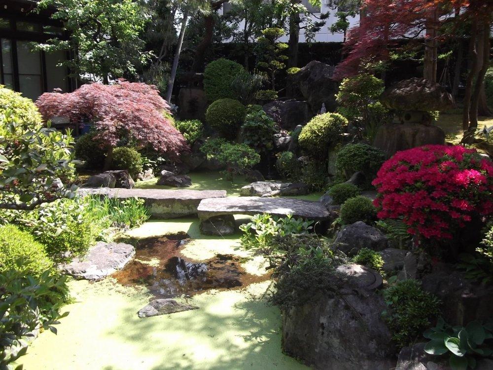 Khu vườn Jyorin-ji tại ngôi chùa bên cạnh