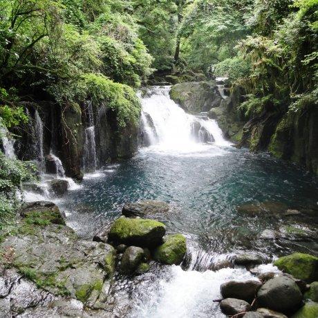 A Natural Wonder: Kikuchi Gorge