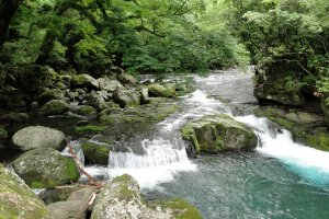The river running through Kikuchi Gorge