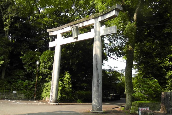 The Miyazaki Shrine Forest - Part 3