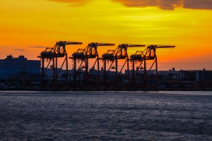 Industrial cranes silhoutted in the sunset