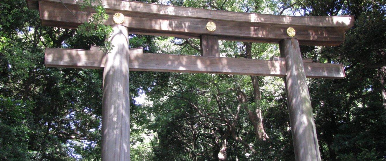 Тории храма Мэйдзи Дзингу