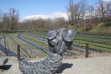 Скульптура корня васаби