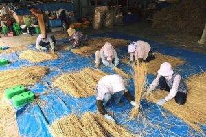 A palha de arroz é seca, limpa, cortada em tamanho uniforme, e depois são criadas cordas, torcidos e fachos. Os habitantes locais e a organização do festival trabalham em conjunto.