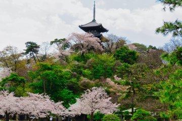 Пагода в саду Санкэйэн
