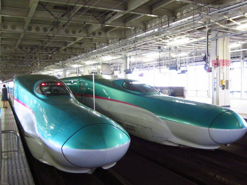 <p>Hayabusa Shinkansen</p>