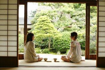Matsue, « Ville Du Thé » : Une Tradition Ancienne Toujours Bien Vivante