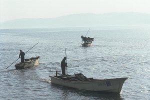 Les pêcheurs de coquillages shijimi sur le lac Shinji, septième plus grand lac du Japon.