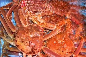 On trouve du crabe dans de très nombreux restaurants de Matsue pendant la saison hivernale. Bouilli, grillé, cru... il y en a pour tous les goûts.