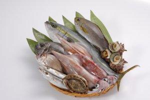 La mer du Japon est extrêmement poissonneuse ; les amateurs de sushi et de sashimi seront comblés.