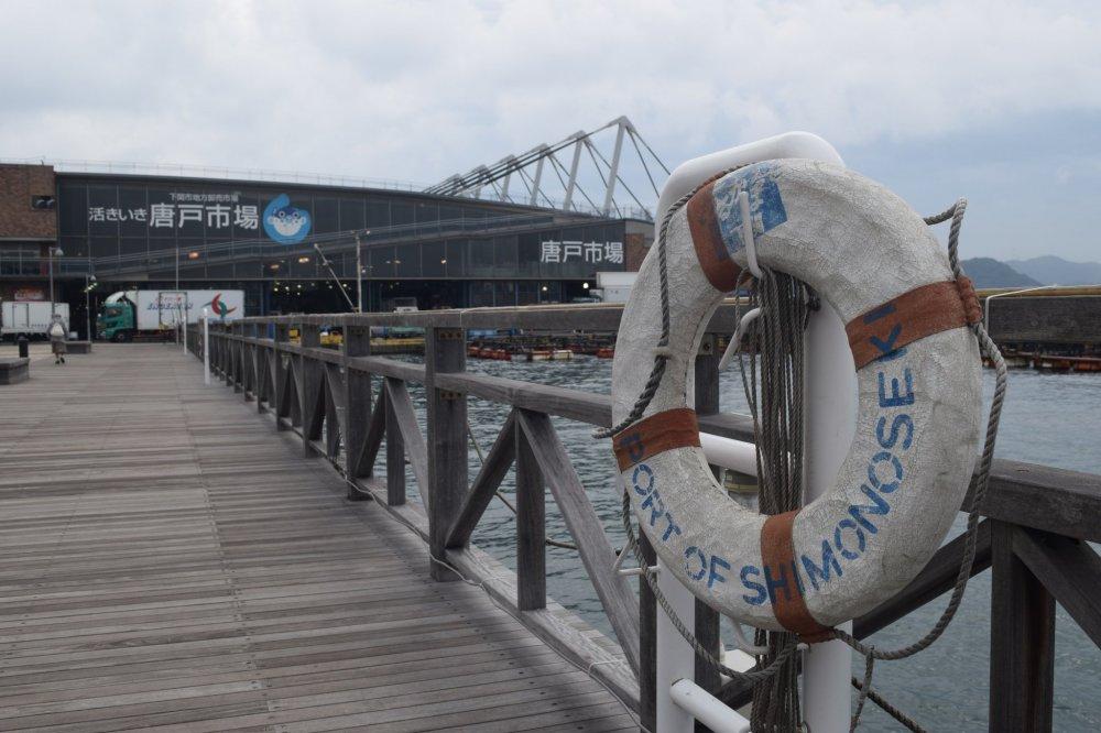 항구 구역와 수산 시장