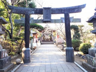 The torii gate signifying the entrance to Wadatsumi no Miya Shrine.
