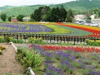 Khu vườn trên đồi Zerubu