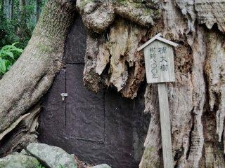 Khu vực Kumano là một địa điểm thiêng liêng. Các đền thờ nhỏ và các vật thờ khác nằm dọc theo con đường dẫn tới thác nước