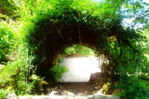 An entrance leading you into the world of the winery