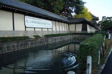 东本愿寺,一处静心之处