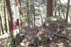 Not alone on Mt Asama