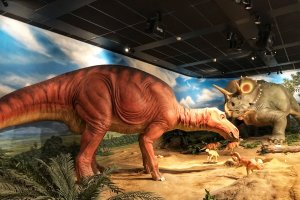 These dinosaurs move - there are seats to watch a show all about them