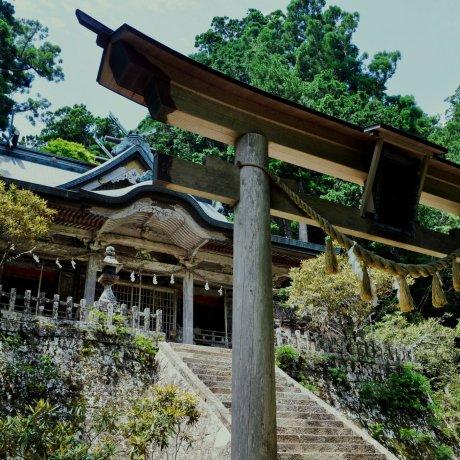 Đền Tamaki
