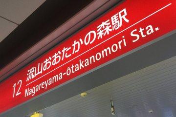 Nagareyama Ootakanomori SC