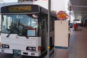 Free Shuttle Bus Service