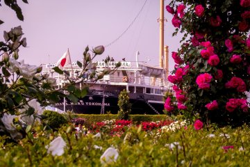 This famous ship called the 'Hikawa Maru', looks especially colorful on this occasion