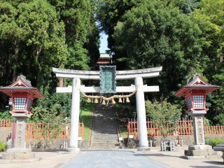 After passing the torii you have to climb 202 stone steps!