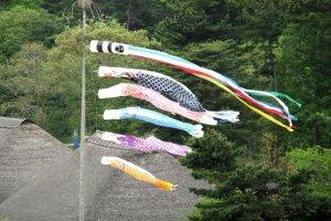 Kodomo-no-hi emblem at Hitachi Seaside Park