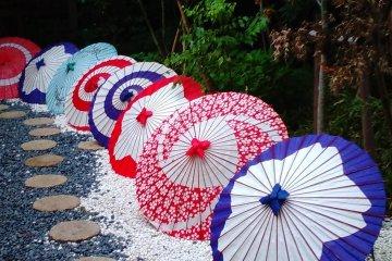 Vibrant parasols
