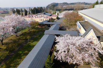 The extensive compound behind Midori-no-Sato