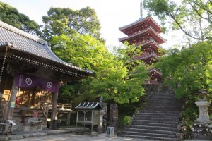 Mountain-top Temple and Gardens in Kochi City