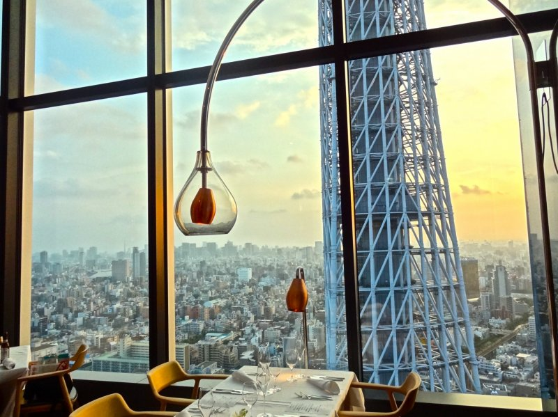 <p>Captivating view of Tokyo Skytree Tower and the surrounding city</p>