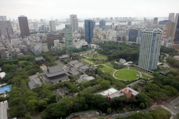 Bird's eye view of Shiba Park. The tomb is located beneath the little grove to the left of Prince Park Tower on the right.