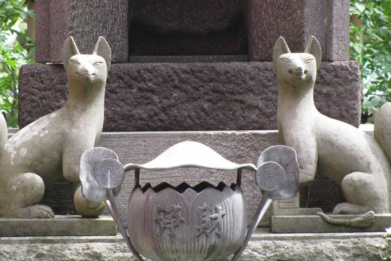 Kitsune at Hasedera
