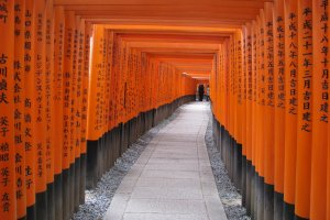 The famous torii of Fushimi Inari