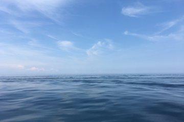 清澈的相模湾