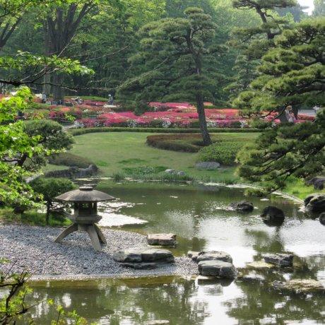 Tokyo's Fabulous Gardens