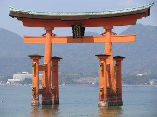 Torii of Itsukushima Jinja (shrine)