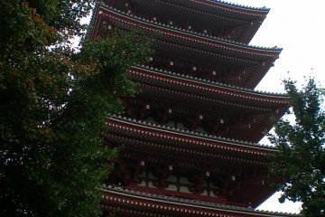 <p>Пятиэтажная пагода, вид сбоку</p>