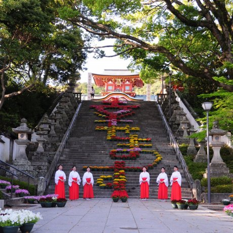 Walk Around Historical Places and Be a Gourmet in Hofu