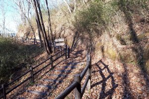 Easy nature trail