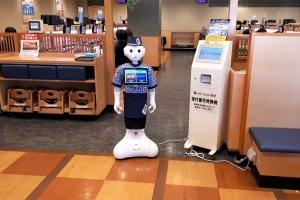 Robot greeting