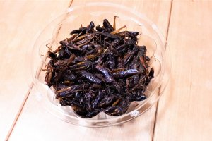 A mass of dark insects that taste quite sweet