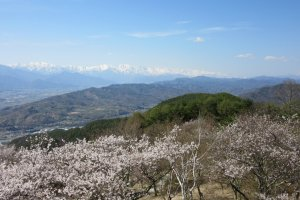 An exciting mountain view and spring mood in the air
