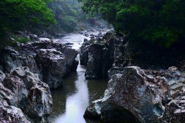 Wilderness of Nakatsu